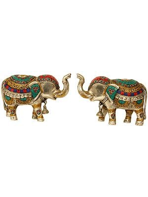 Elephant Pair with Bells and Upraised Trunks (Supremely Auspicious According to Vastu)