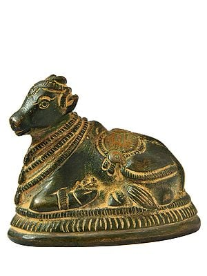 Nandi (Small Statue)