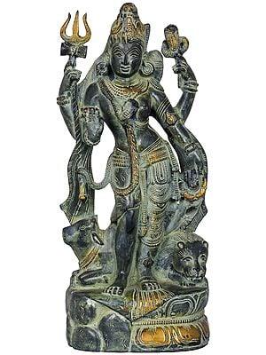 Ardhanarishvara, Precursor To The Perceiver And The Perceived