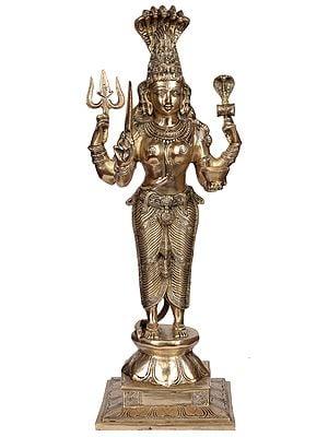 Goddess Mariamman