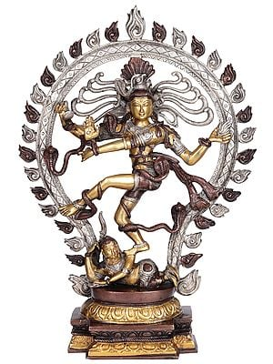 Large Size Nataraja (King of Dancers)