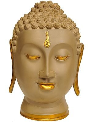 Meditative Buddha Head