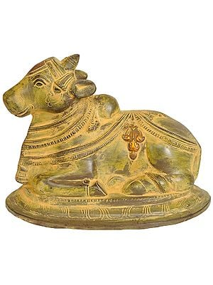 Nandi - The Mount of Lord Shiva (Gatekeeper of Shiva and Parvati)