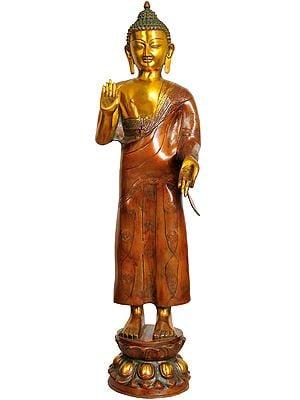 Large Size Standing Buddha Granting Abhaya