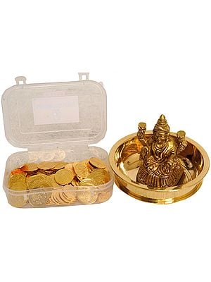 Goddess Lakshmi Puja Kit with 108 Coins