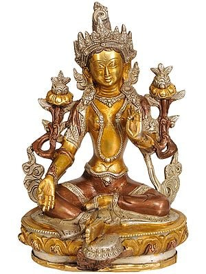 Saviour Goddess Green Tara (Tibetan Buddhist Deity)