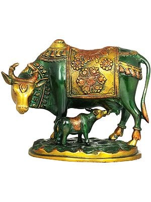 Cow and Calf - Most Sacred Animal of India