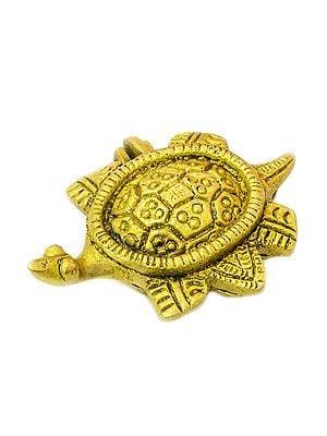 Auspicious Vastu Tortoise Box
