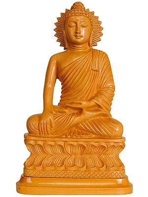 Shakyamuni in  Bhumisparsha Mudra