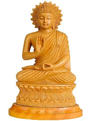 Lord Buddha in Vitark Mudra