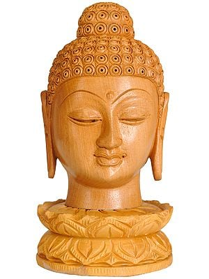 Lord Buddha's Head