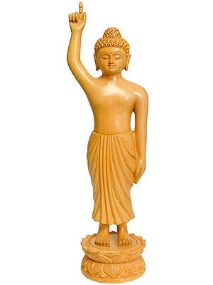 Gautam Buddha (With Lotus Springing Under His Feet at Time of His Birth)