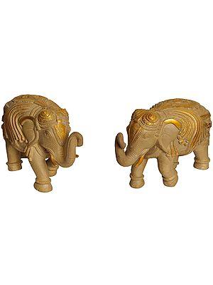Ornamented Elephant Pair (Supremely Auspicious According to Vastu)