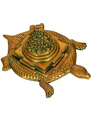 Shri Yantra on Tortoise (Auspicious According To Vastu)
