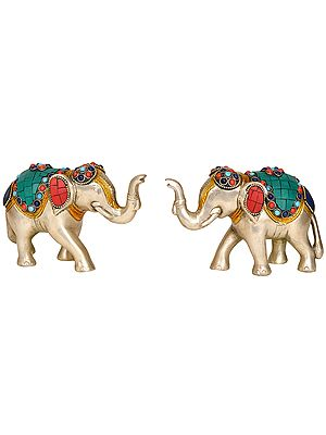 Pair of Elephant (Supremely Auspicious According to Vastu)