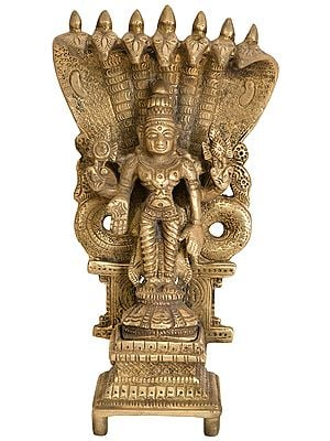 Four-Armed Standing Vishnu with Seven-Hooded Shesha Atop