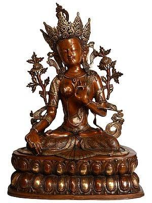 Tibetan Buddhist Deity White Tara (Large Size)