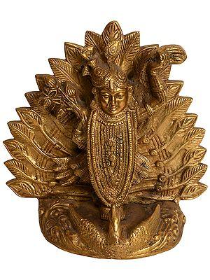 Shrinathji - Lord Krishna