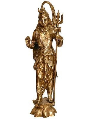 Lord Shiva Standing on Lotus
