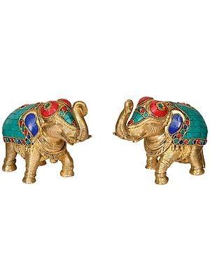 Pair of Elephant with Upraised Trunks (Supremely Auspicious Accroding to Vastu)