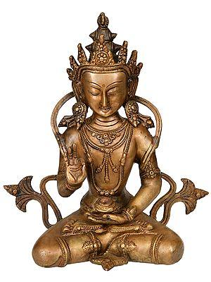 Crown Buddha (Tibetan Buddhist Deity)