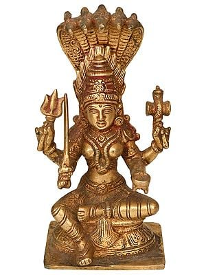 South Indian Goddess Durga (Mariamman)