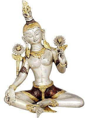 Goddess Green Tara (Tibetan Buddhist)