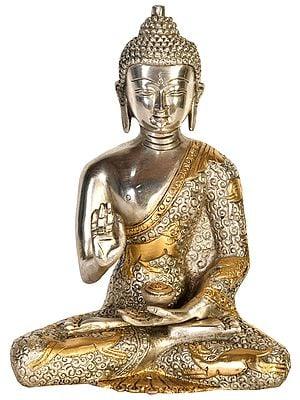 Tibetan Buddhist Deity Blessing Buddha with Carved Robe