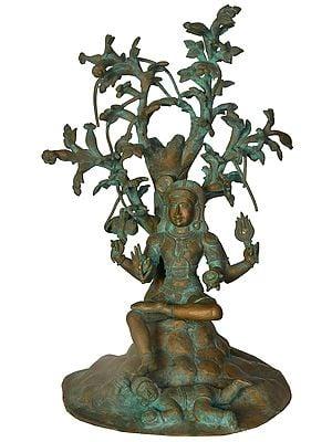 Guru-roopa Dakshinamurti Shiva