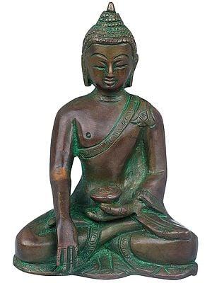 Samadhi Buddha - Tibetan Buddhist