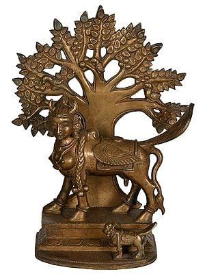 Kamadhenu Cow Under The Kalpavriksha Tree