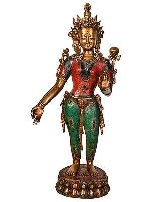Large Size Standing Tara (Tibetan Buddhist)
