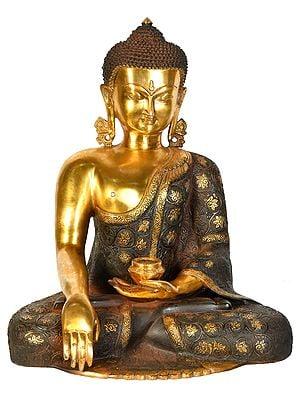 Lord Buddha Wearing a Carved Robe (Tibetan Buddhist)