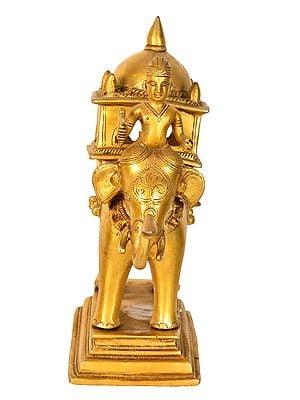 Elephant Palki of a King