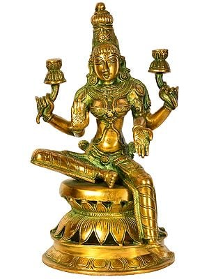 Lakshmi Ji - Goddess of Fortune and Prosperity