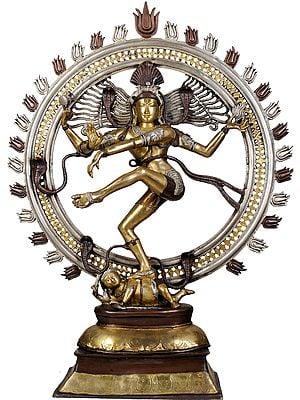Large Size Nataraja Dancing on Apasmara