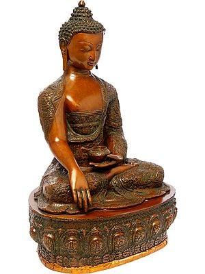 Bhumisparsha Buddha Wearing a Carved Robe (Tibetan Buddhist)