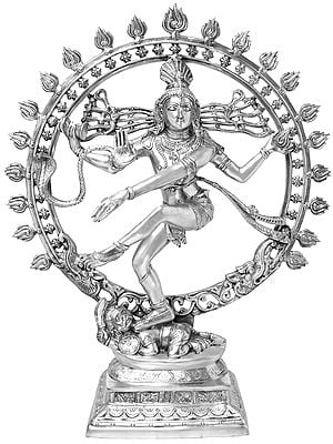 Nataraja Conforming to Textual Prescriptions