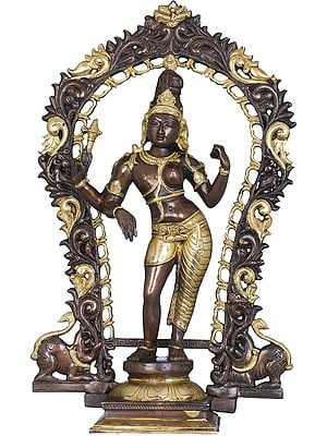 Ardhanarishvara - The Half Male and Half Female Form of  Shiva with Floral Aureole