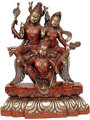 Lakshmi-Narayana, On The Shoulders Of Garuda