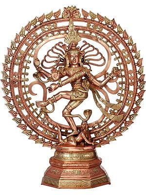 Let Nataraja Stun You