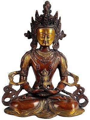 Tibetan Buddhist Deity Amitabha Buddha