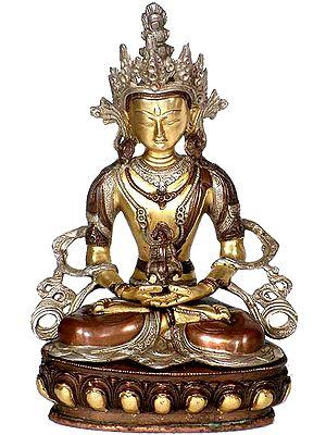 Amitabha Buddha In His Meditative Glory