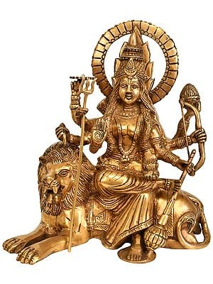 Ashtabhuja Durga, Her Leonine Beauty