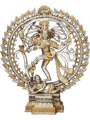 Let Nataraja Enrapture You
