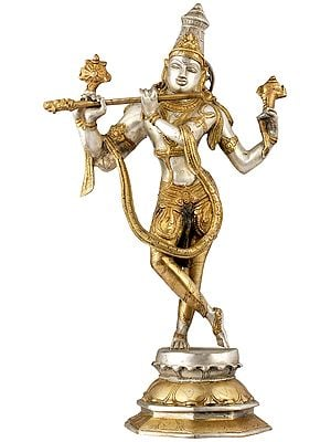 Cosmic Form of Lord Krishna
