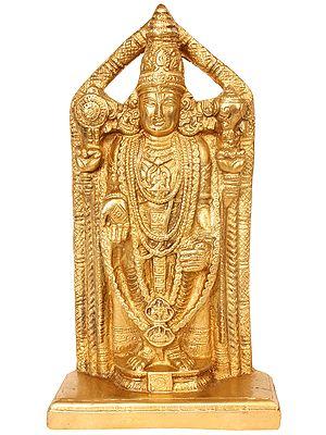 Lord Venkateshvara, Heavily Ornamented