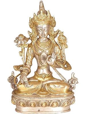 White Tara, Divinity On Her High Brow