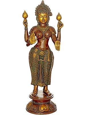 Goddess Lakshmi, Of The Resplendent Skin