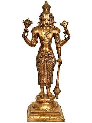 Lord Vishnu: The Cosmic Commander